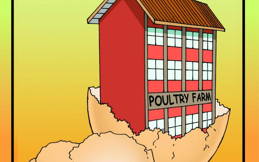 The Poultry Farm